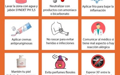 Picaduras de mosquito